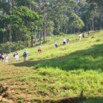 Путешествие в Амазонские джунгли -…